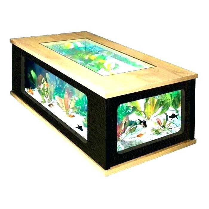 meja plus aquarium